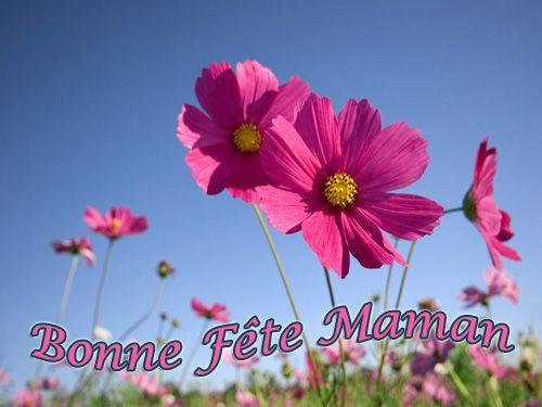 Bonne fête à toutes les mamans dans Ephéméride 85d1218b